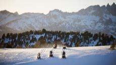 캘리포니아 드리밍…겨울 추천여행지 3곳