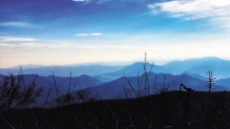 '작년 세계의 중심'…1월의 평창, 바람의 맛을 기억하라