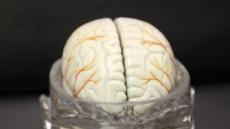 [생생건강 365] 겨울철 뇌졸중은 왜?