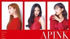 에이핑크, 韓 이어 日 단독 콘서트 개최 '9년차 여전한 해외 인기'