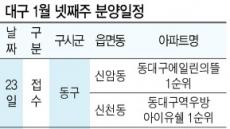 """""""새 아파트가 좋아""""…대구 분양시장 연초부터 '핫'"""