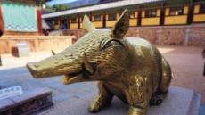 """행운의 돼지섬·불국사 복돼지…""""황금돼지 복된 기운 받으세요"""""""