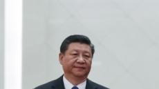 시진핑 7가지 위험 경고…회색코뿔소, 블랙스완 언급