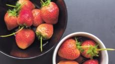 초여름 수확하던 딸기...언제 '겨울과일' 제왕 됐나