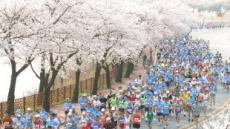 경주시, 제28회 경주벚꽃마라톤대회 참가자 접수