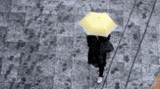 [헤럴드포토] '폭설 속 노란우산…'