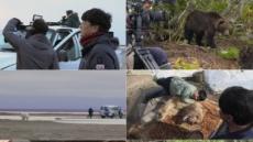 UHD 다큐멘터리 '곰', 에필로그, 곰에게 배우다로 2년여 대장정 마무리