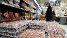 '달걀 산란일자 표시제' 23일부터 예정대로 시행