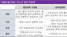 금리위험 줄인 새 주담대...규제회피 기능 탁월
