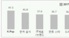 'K팝' '한류스타' 지고, '화장품' '성형' 뜨고…한류 판도가 바뀐다