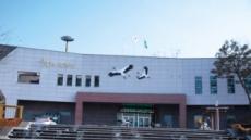 '길조' 황새의 우아한 비행…청정 예산 또하나의 볼거리