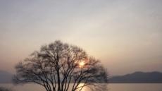 뉘엿뉘엿 해가 쉬어가는 예당호…금빛 물드는 건 나무인가 나인가