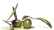 세계적 인기 다이어트 식단 '3NO 현상'