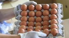 '영양보고' 달걀의 배신…하루 1개 이상 섭취땐 심장질환·사망 위험률 '高~'