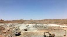 포스코, 호주업체와 리튬공장 설립