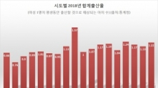 [인구절벽 쇼크]중앙 주도 인구대책 '한계'…균형발전이 答