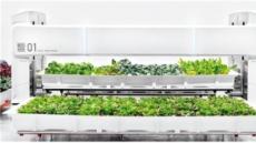 [aT와 함께하는 글로벌푸드 리포트] 파종~수확까지 완전자동화…로봇농장 스마트팜