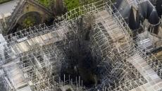 노트르담의 작은 기적…붕괴된 첨탑속 꿀벌 18만 마리 모두 무사