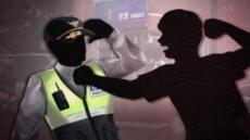 만취 檢수사관, 출동한 경찰관 폭행…300만 원 벌금