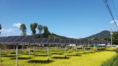 비금도 염전부지에 태양광발전소 추진한수원, 신재생에너지 투자 확대 박차