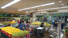 일반 슈퍼마켓, '알뜰형 점포'로 바꾸니 매출 5배 ↑