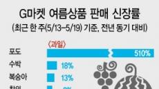 여름과일 포도 판매 510% 껑충편의점은 벌써 '얼음 확보' 전쟁