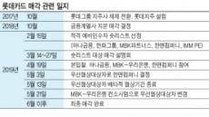 [우리금융 '롯데카드' 반전 드라마] 손태승 회장 '비은행사업' 강화 가속도