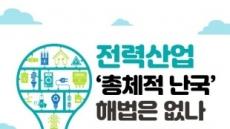 김삼화 의원, '전력산업 총체적 난국, 해법 없나' 토론회 개최