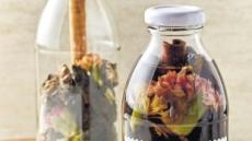 진달래·매화·아카시아·국화…꽃담금주로 즐겨볼까