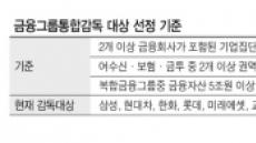 카드 매각했지만…롯데, 금융그룹통합감독 '설왕설래'