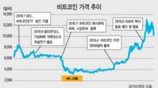 [Libra 미래화폐 될까] 암호화 자산 시장 '구원투수' 기대...비트코인 작년말 대비 236%급등