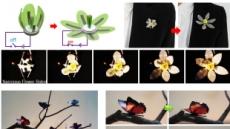 나비 날갯짓처럼 부드러운 '소프트 로봇 인공근육' 개발