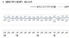 文대통령 지지율 부정 49%>긍정 45%…조국 영향 '공직자 인사' 평가서 '낙제점'