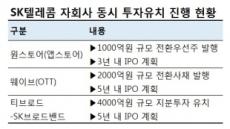 SKB·웨이브·원스토어에 7000억…SKT 동시 투자유치에 시장 '난색'