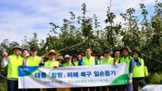 농협중앙회 조합구조개선부, 태풍 '링링' 피해농가 일손돕기 구슬땀