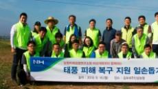 농협중앙회 미래경영연구소 태풍 '링링' 피해농가 일손돕기 구슬땀
