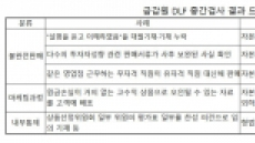 DLF 불법·위법 조목조목 보니…중징계·형사처벌 받을 수