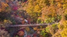 단풍에 물든 산, 숲, 강, 호수…그 속에 무르익은 가을이