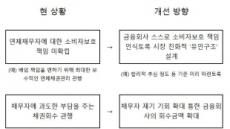 연체 채무자에 협상권 부여…정부 '소비자신용법' 제정 추진