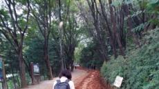 계족산 황톳길·대청호반길…대전의 '속살'을 따라 걷다