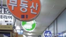 문 닫은 중개업소 vs 불시점검 노리는 당국…현장점검 기싸움