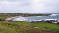 [백상현의 세계 100대 골프 여행 호주 케이프 위컴 골프링크스] 9개 홀이 바닷가 따라…배스해협이 주는 '꿈의 코스'
