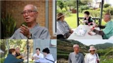 길고양이 집 지어 주는 원로배우 박병호, 64년 연기인생