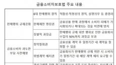 DLF가 깨운 금융소비자보호법안…김진태를 넘어라(?)