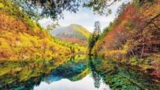 설악산·中주자이거우·美코먼…'형형색색' 가을색 곱기도 하여라