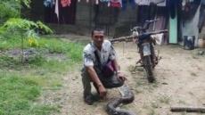 6m 뱀과 사투…아내 구한 용감한 印尼남편