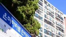 [단독]서울시·강남구, '내홍' 은마아파트 재건축추진위 운영실태 점검한다