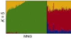 마크로젠, 동북아 최대 규모 참조 유전체 DB 구축
