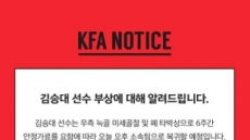 """김승대, 부상으로 대표팀 소집해제…""""대체선수 발탁 없다"""""""