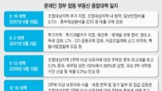 청와대發 압박…주택시장 '딥임팩트' 우려